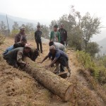 Carrying wood to safe place